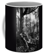 Trees At The Entrance To The Valley Of No Return Coffee Mug