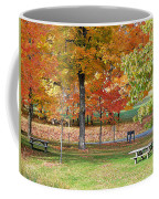 Trees Begins Autumn Color Coffee Mug