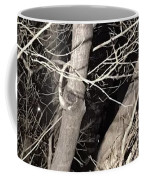 Trees Closeup Coffee Mug