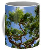 Trees In Bermuda Coffee Mug