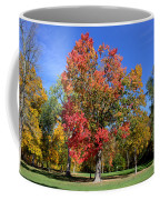 Tree's In The Forest 4 Coffee Mug