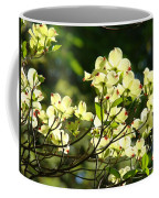 Trees Landscape Art Sunlit White Dogwood Flowers Baslee Troutman Coffee Mug