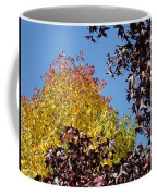 Trees Landscape Blue Sky Art Prints Fall Leaves Coffee Mug