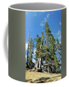 Trees On The Edge 1 Coffee Mug