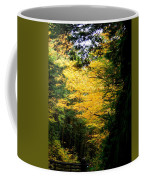 Trees Over The Flumes Gorge Coffee Mug