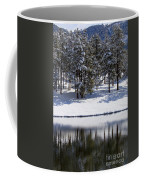Trees Reflecting In Duck Pond In Colorado Snow Coffee Mug