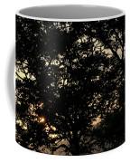 Trees - San Salvador II Coffee Mug