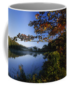 Trees With Fall Colors Along The Still Coffee Mug by Michael Melford