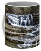 Treman Cascades #4 Coffee Mug