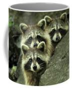Tres Banditos Coffee Mug