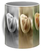 Tri Color Trio Coffee Mug