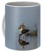 Tri-colored Heron And Glossy Ibis Coffee Mug