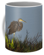 Tri-colored Heron In The Morning Light Coffee Mug