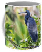 Tri-colored Heron On A Branch  Coffee Mug