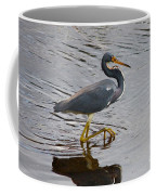 Tri-colored Heron Wading In The Marsh Coffee Mug