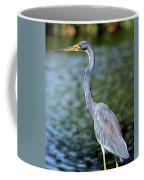Tri, Tri, Tricolor As You Might Coffee Mug