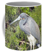 Tricolor Heron Profile Coffee Mug