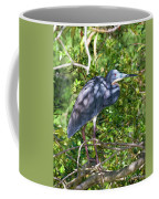 Tricolor In The Shadows Coffee Mug