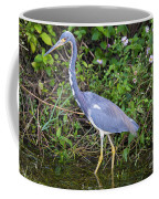 Tricolored Heron Hunting Coffee Mug