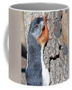 Tricolored Squirrel Coffee Mug