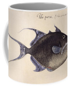 Trigger-fish, 1585 Coffee Mug