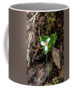 Trillium #3 Coffee Mug