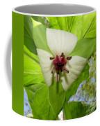 Trillium Wildflower Coffee Mug