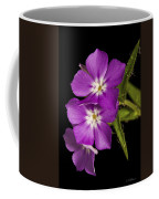 Trio In Purple Coffee Mug