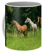 Trio In Spring Coffee Mug