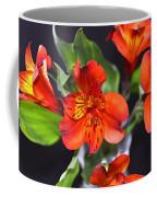 Trio Of Alstroemeria Inca Flowers-4 Coffee Mug