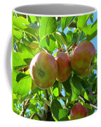 Trio Of Apples Coffee Mug