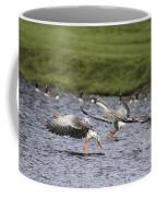 Triple Lift Off Coffee Mug