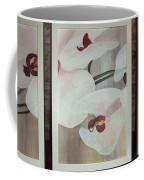 Triptic White Orchids On Light Background Coffee Mug