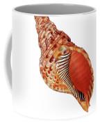 Triton Shell On White Vertical Coffee Mug