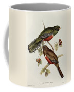Trogon Collaris Coffee Mug by John Gould