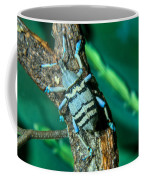 Tropical Blue Weevil Coffee Mug