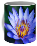 Tropical Dreams Coffee Mug by Sharon Mau