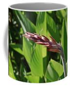 Tropical Flower Buds Coffee Mug