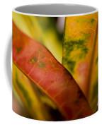 Tropical Leaf Abstract Coffee Mug