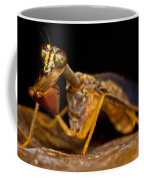 Tropical Mantispid Coffee Mug