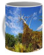 Tropical Plants In A Preserve In Florida Coffee Mug