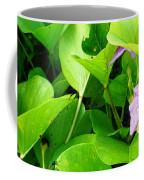 Tropical Rosewood In Hiding Coffee Mug