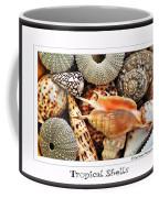 Tropical Shells... Greeting Card Coffee Mug by Kaye Menner