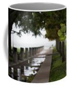 Tropical Storm Hermine Coffee Mug