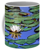 Tropical Water Lily Coffee Mug