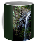 Tropical Waterfall Coffee Mug