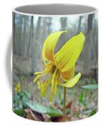 Trout Lily - Erythronium Americanum  Coffee Mug