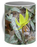 Trout Lily Wildflower - Erythronium Americanum Coffee Mug