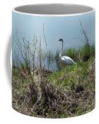 Trumpeter Swan Coffee Mug