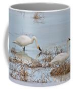 Trumpter Swans 8182 Coffee Mug
